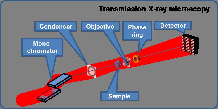 Schematic of transmission X-ray microscopy