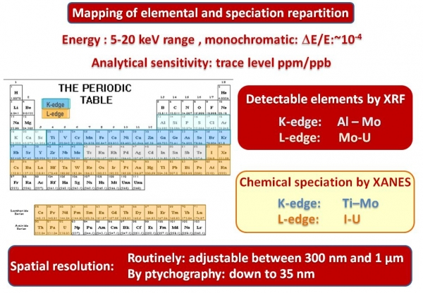 Nanoscopium french national synchrotron facility multi lengthscale elemental distribution mapping is available at the beamline urtaz